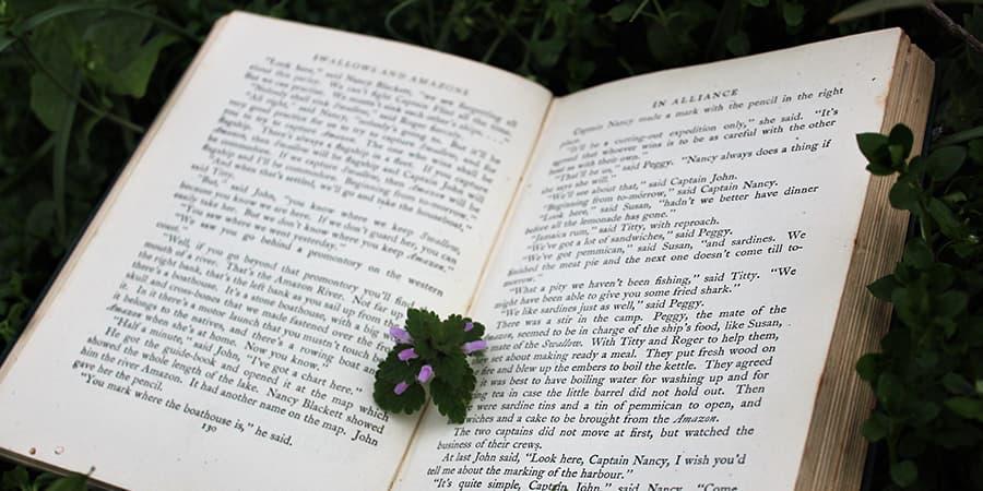 改善學英文閱讀的簡單步驟-透過閱讀「英文小說」增進英文閱讀能力