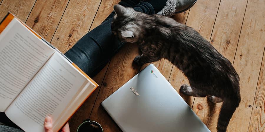 改善學英文閱讀的簡單步驟-固定規劃時間閱讀,培養習慣